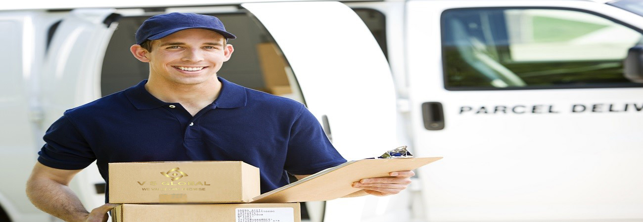 VS Global | International Courier Services in Gurgaon, DHL